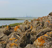 Isle Of Grain by Sophie Lasson
