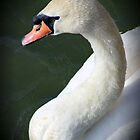 Swan Brightlingsea by liberthine01