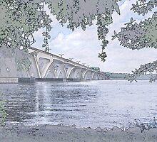 Woodrow Wilson Bridge  by Eileen McVey