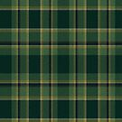 02893 Yuma County, Arizona E-fficial Fashion Tartan Fabric Print Iphone Case by Detnecs2013