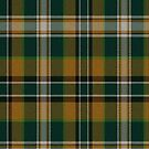 02895 Elkhart County, Indiana E-fficial Fashion Tartan Fabric Print Iphone Case by Detnecs2013