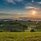 Sunny day by Peter Zajfrid