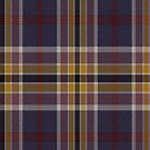02897 Sangamon County, Illinois E-fficial Fashion Tartan Fabric Print Iphone Case by Detnecs2013