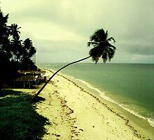 Paradise Island, Pernambuco, Brazil by ibadishi