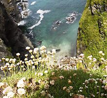 Clifftop View by TinkleBerry