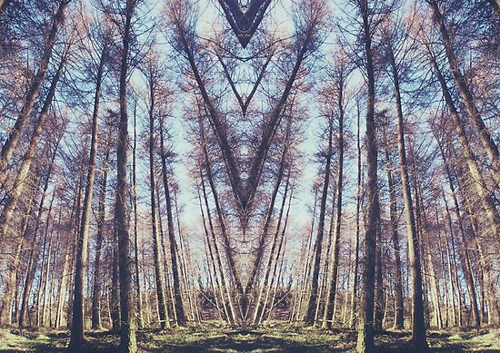 A thousand years in perfect symmetry by AmyStardust