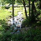 River by KitKat Lambert