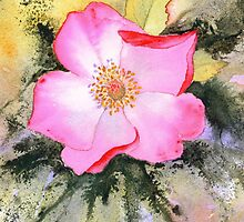 Rosemary's Rose (Original sold) by Jacki Stokes