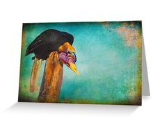 Finer feathered Friends: Red Knobbed Hornbill Greeting Card