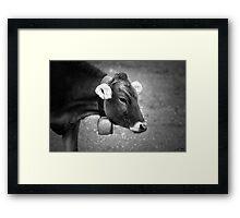 Alpenmilch Framed Print