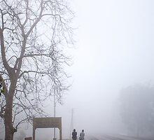 A Walk In The Mist by saptak ganguly