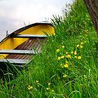 Waterside spring scene by Javimage