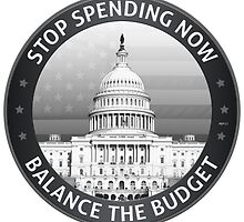 Balance The Budget by morningdance