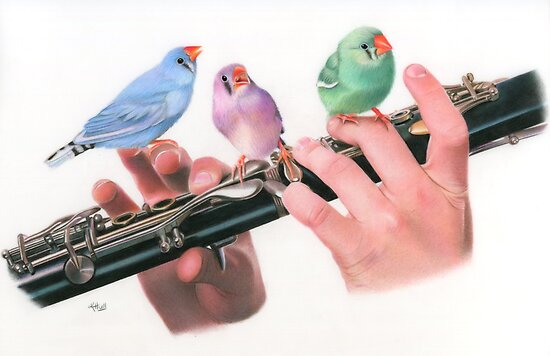 The Choir by Karen  Hull