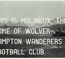 Woverhampton Wanderers Football Club by Jim Roberts