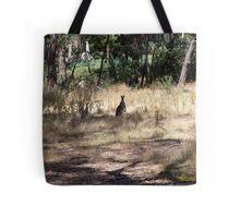 Kangaroos at Hanging Rock, Central Victoria, Australia Tote Bag