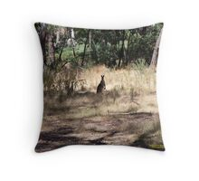 Kangaroos at Hanging Rock, Central Victoria, Australia Throw Pillow