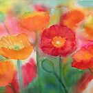 Poppies by Karin Zeller