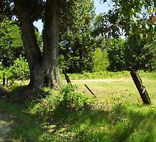 Farm Scene by WildestArt