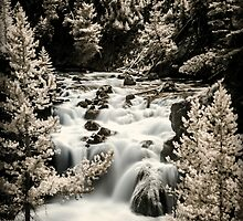 Yellowstone - Firehole Canyon by Kaitlin Kelly