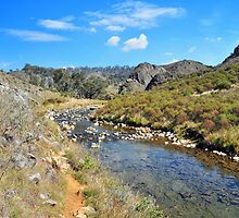 Cave Creek #1 by Terry Everson