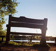 Bench by the Lake by James Taylor