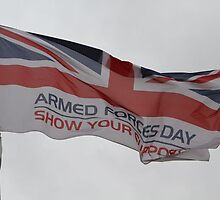 Armed Forces Day Flag Raised at City Hall by Keith Larby