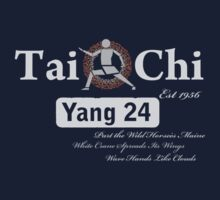Tai Chi  by SCoffin