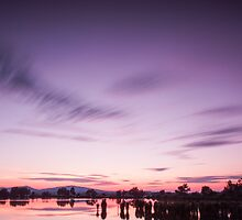 Purple sunset by Dominika Aniola