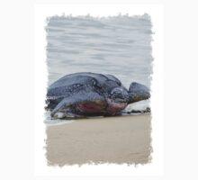 Leatherback Sea Turtle, Grafton, Tobago. 02b T-Shirt