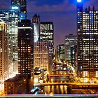 Chicago River Portrait by Daisy Yeung