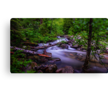 Small Cascade - Forest Service Road 5510 - Washington State - U.S.A. Canvas Print
