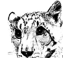 Charcoal Snow Leopard by nonny