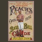 Vintage Reach's Baseball Guide by kustom