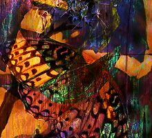 Butterfly Dreams by Robert Ball
