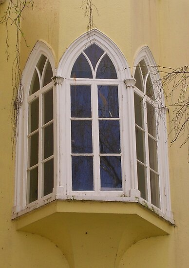 The Gothic House, Totnes by lezvee