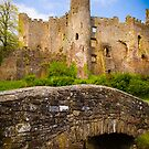 Ruined Castle at Laugharne by mlphoto