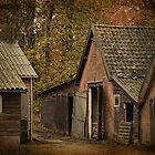 The Old Barn  by Johanna26