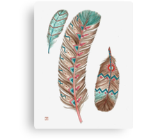 Feathers 3 Peach and Blue Canvas Print