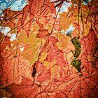 Maple Leaves Mosaic by Wib Dawson