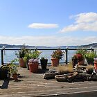 Deck Garden on the Puget Sound by seeingred13