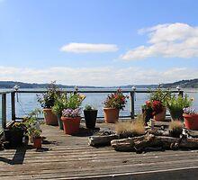 Deck Garden on the Puget Sound by seeingred13