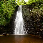 Falling Foss Waterfall by paulwhittle