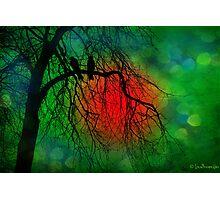A Midsummer Night's Dream Photographic Print