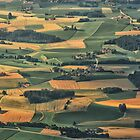 Bavarian Fields Forever by Kasia-D