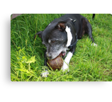 One of Her Five a Day Canvas Print