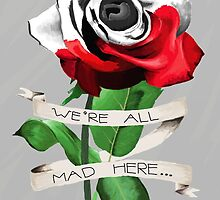 We're All Mad Here by Zoe Swann