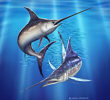 Marlin & Swordfish by David Pearce