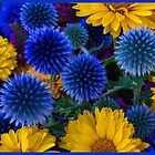 flower blue bliss by CBvisiondesign