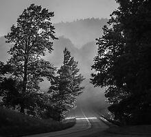 into the mist by Alexandr Grichenko